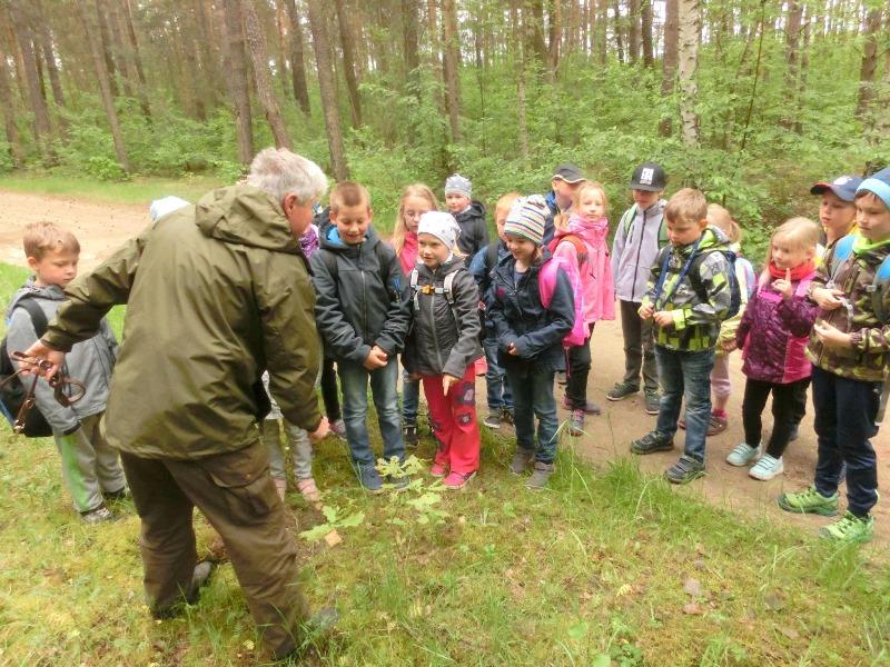 Flex im Wald2 GS Drebkau